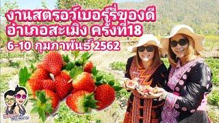 งานสตรอว์เบอร์รี สะเมิง ครั้งที่ 18 วันที่ 6-10 ก.พ. 2562 Samoeng Strawberry Festival 6th-10th 2019