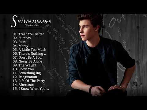 Shawn Mendes -  The Best Songs