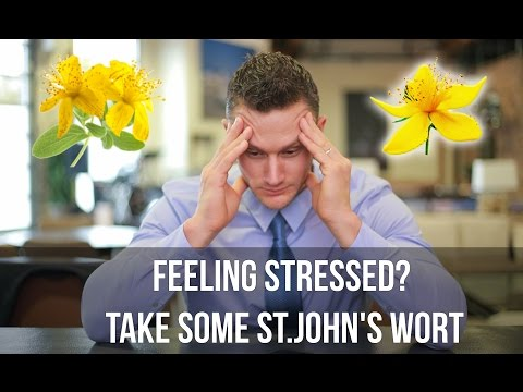 Anxiety Relief: Reduces Stress with St. John's Wort- Thomas DeLauer