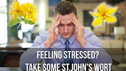 hqdefault - Statistics Hypericin Helps Depression