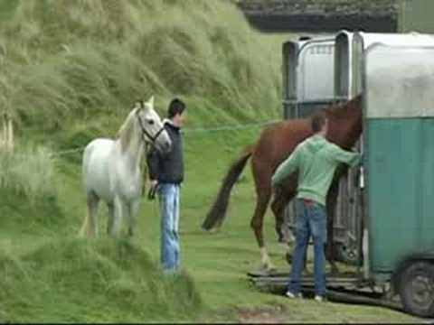 Glenbeigh Races. Horse Racing In Ireland