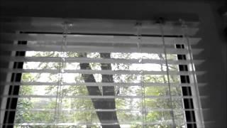 ЖАЛЮЗИ.  КРЕПЛЕНИЕ БЕЗ САМОРЕЗОВ.(Крепление жалюзи к окну, без сверления, без саморезов, за 5 минут., 2013-07-25T17:18:07.000Z)