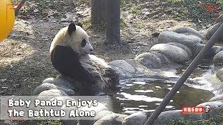 Baby Panda Enjoys The Bathtub Alone | iPanda