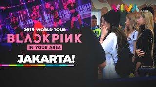 Baixar BLACKPINK Konser di Jakarta, Begini Gaya Jennie, Lisa, Jisoo, Rose Saat Tiba di Indonesia
