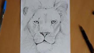 Как нарисовать льва! (Видео с подсказками)(В видео наглядно показано как быстро можно нарисовать красивого льва!, 2015-12-28T06:47:44.000Z)