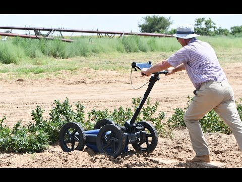 Ground-penetrating radar could help producers dig potatoes early