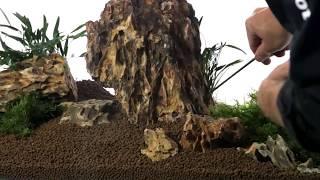 Dragon Stone Kaya İle Bitkili Akvaryum Tasarımı   Atakanpetshop