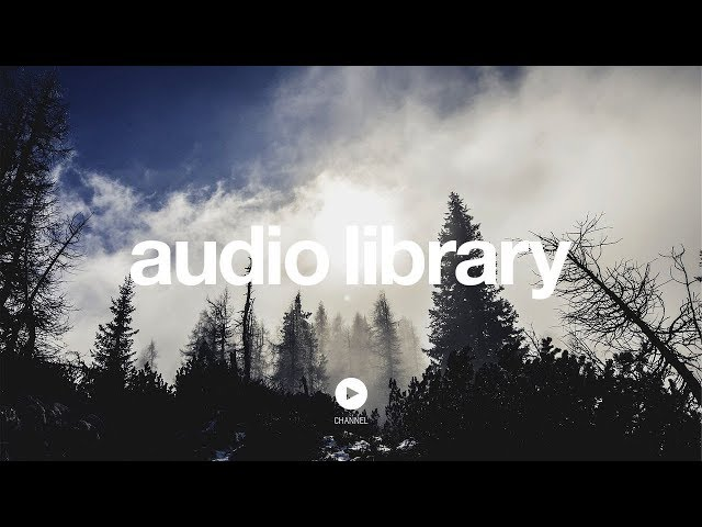 An Upsetting Theme  - Kevin MacLeod (No Copyright Music)
