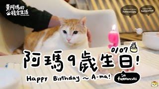 黃阿瑪的後宮生活-阿瑪9歲生日~Happy Birthday to A-ma!