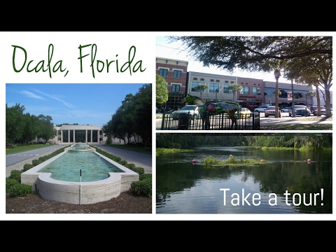 Take A Tour Of Ocala, Florida [collaboration]