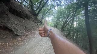Trail Running Redwood Regional Park in Oakland