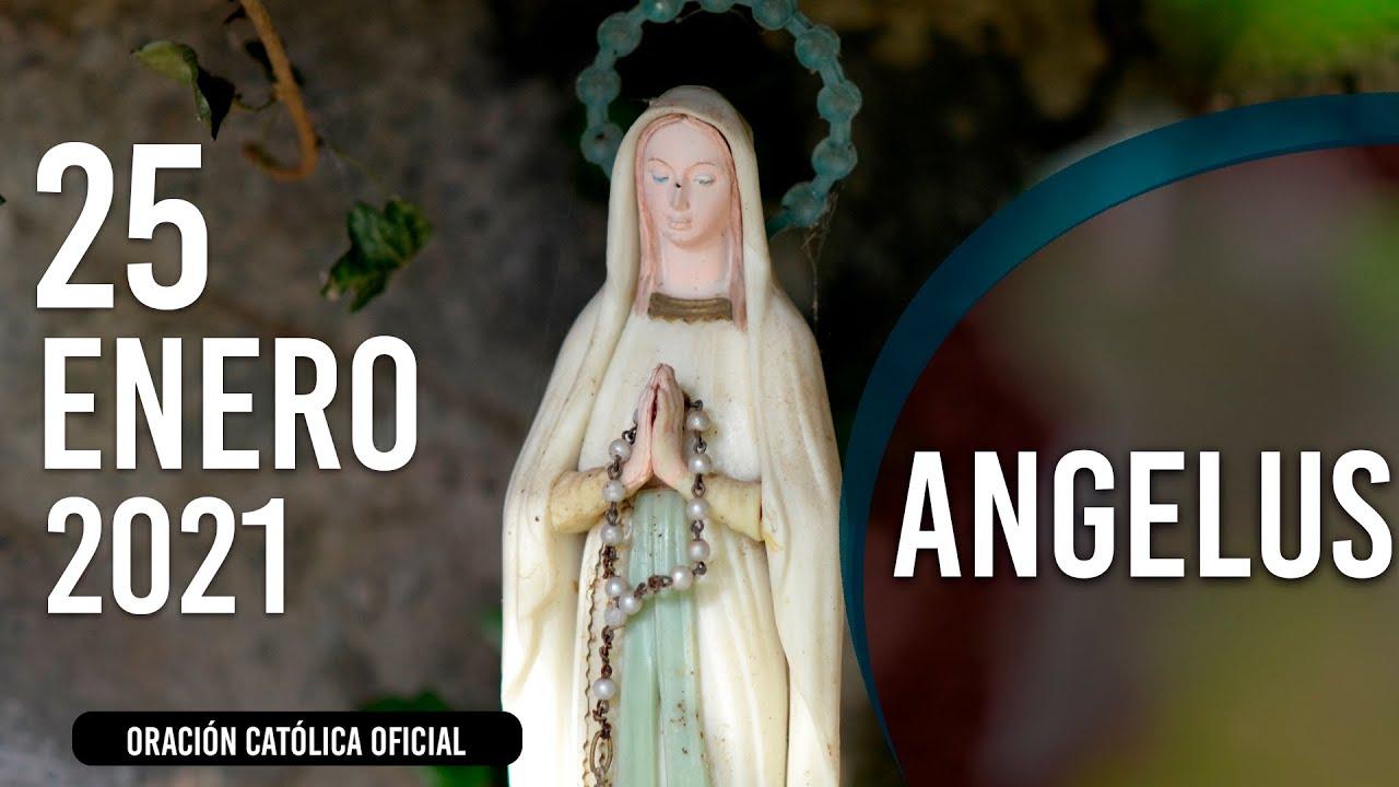 Ángelus de Hoy Lunes 25 de Enero de 2021| ORACIÓN DE MEDIODÍA