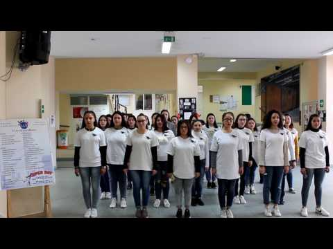flash mob Liceo Statale