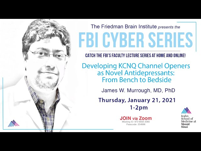 FBI Cyber Series - by James W. Murrough, MD, PhD