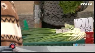 Польза зелени для организма