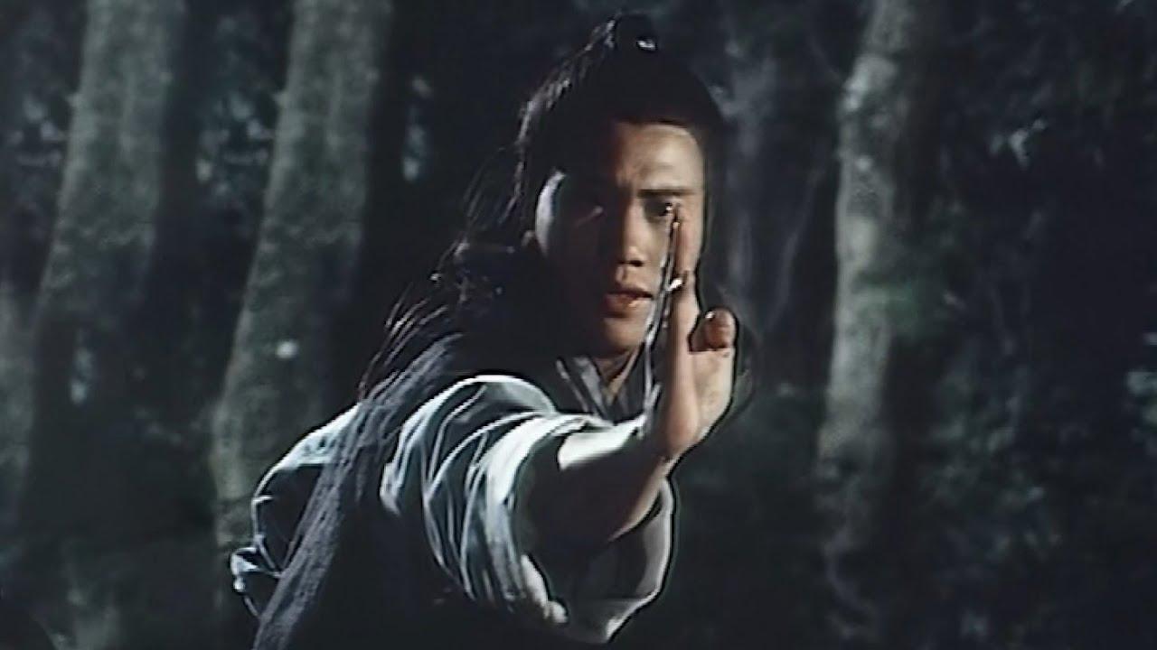 Download ฤทธิ์หมัดสะท้านบู๊ลิ้ม   Tai Chi Master 1980