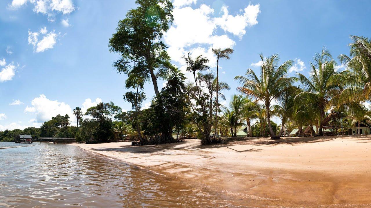 Amazon River Hd Wallpaper White Beach Overbridge Suriname Youtube