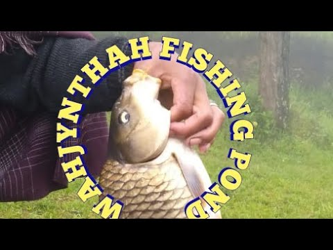 Fishing Pond/Wahjynthah