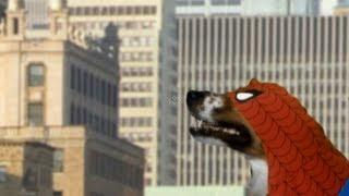 SPIDER-DOG (a spider-man spoof trailer)