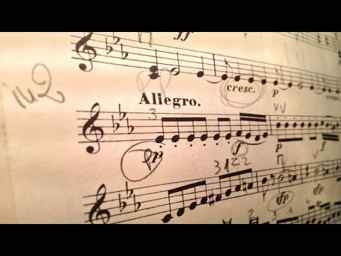 1 Hour of classical music masterpieces - for reading and concentration