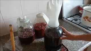 Рецепт наливки из малины и вишни.