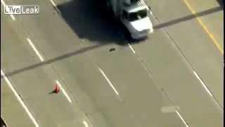 Ducks Crossing The Freeway. Amazing!
