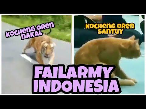 Kebodohan 100% | FAILARMY INDONESIA REBORN #8