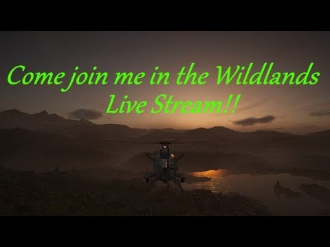 Come join me in the Wildlands Live Stream!!