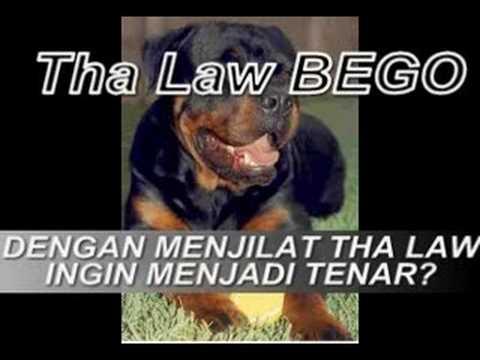THA LAW = SAMPAH MUSIC INDONESIA