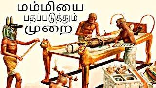 எகிப்தியர்கள் Mummy-யை பதப்படுத்தும் முறையை பற்றி தெரியுமா ? | TMM TV TAMIL