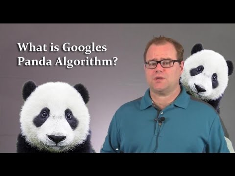 What is The Google Panda Algorithm?