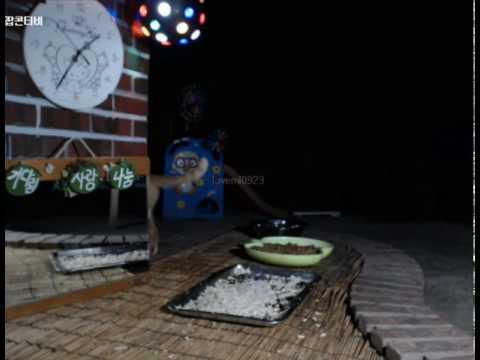 Cats Meok Bang : Stray Cats in South Korea [팝콘티비 BJ도둑고양이 나비월드] 160821 지나가는금동이 오전1시35