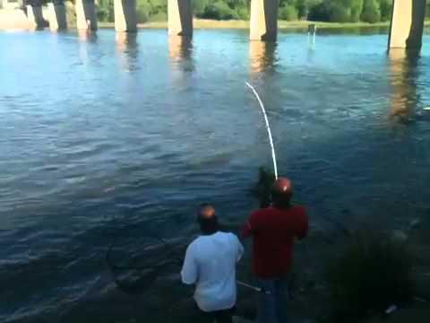 Lavon dam fishing youtube for Lake lavon fishing report