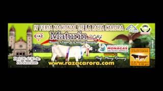 IV FERIA NACIONAL DE LA RAZA CARORA, MATURIN 2014