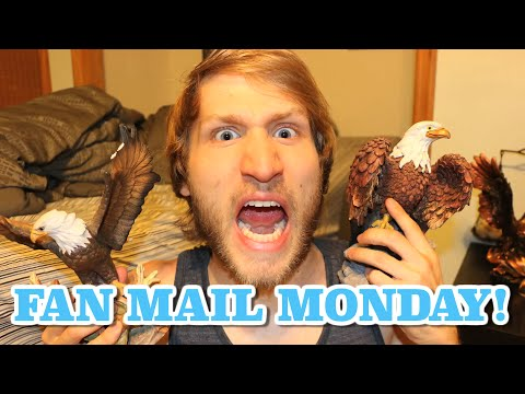 FAN MAIL MONDAY #32 -- EAGLES NEVER DIE!