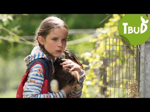 Kaninchenklau (Folge 83) | Tiere Bis Unters Dach | SWR Kindernetz