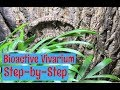 Vivarium (Bioactive) Build for Mourning Geckos