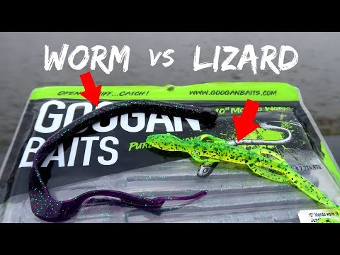 LIZARD vs WORM Fishing CHALLENGE (Which is BETTER?)