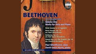 Horn Sonata in F Major, Op. 17 (arr. P. Silverthorne) : II. Poco adagio, quasi andante