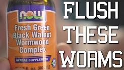 hqdefault - Wormwood Black Walnut Acne