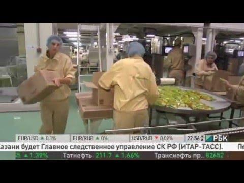 Производство макаронных изделий в России. Роллтон.