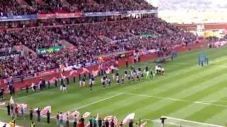 Video Gol Pertandingan Stoke City vs Fulham
