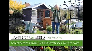 Lavender and Leeks - March 2019 - Allotment Jobs, Spring Harvests and Wildlife