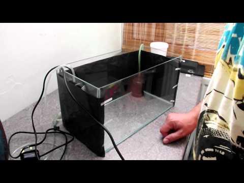 HOW TO: Set up a Quick Quarantine Tank