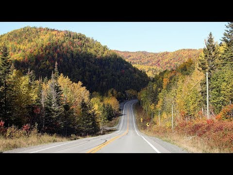 1 week in gaspésie