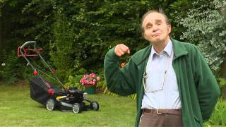 Carrefour : Tondeuse moteur Briggs & Stratton