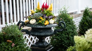 An Easy Fall Pot Full of Color!