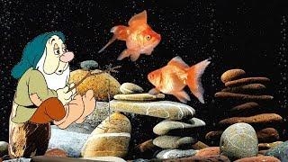 Эх вздыхали рыбаки Андрей Усачев Песня для детей