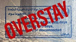 США 5346: Не выехал из страны в указанный срок? Готовится пакет мер.