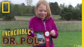 Animal Update: Twinkles the Pig | The Incredible Dr. Pol